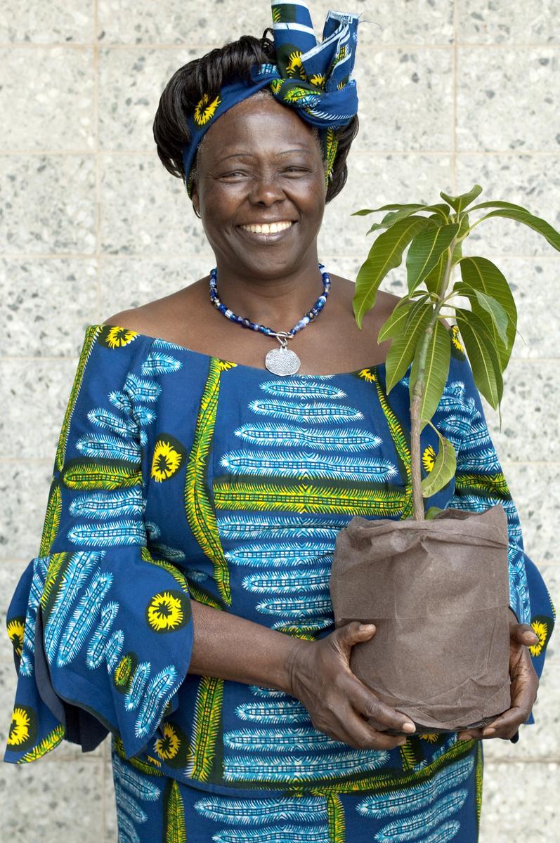 PHOTO-Wangari_Maathai-c-Patrick-Wallet